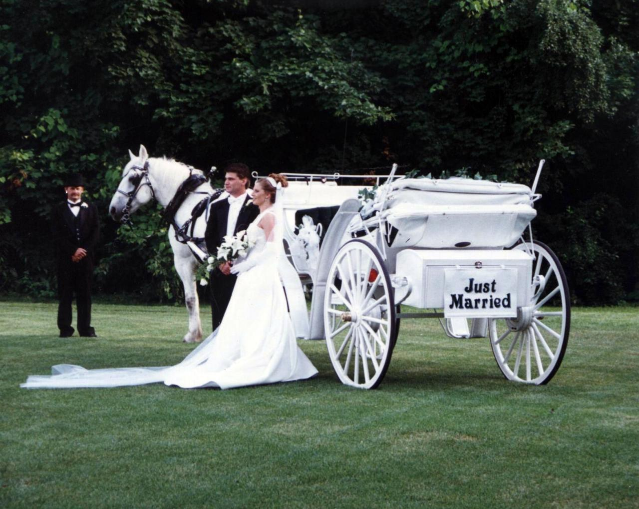Jim Beckys Horse And Carriage Service Of Peotone IL CREATE